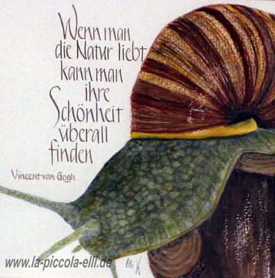 Schneckle
